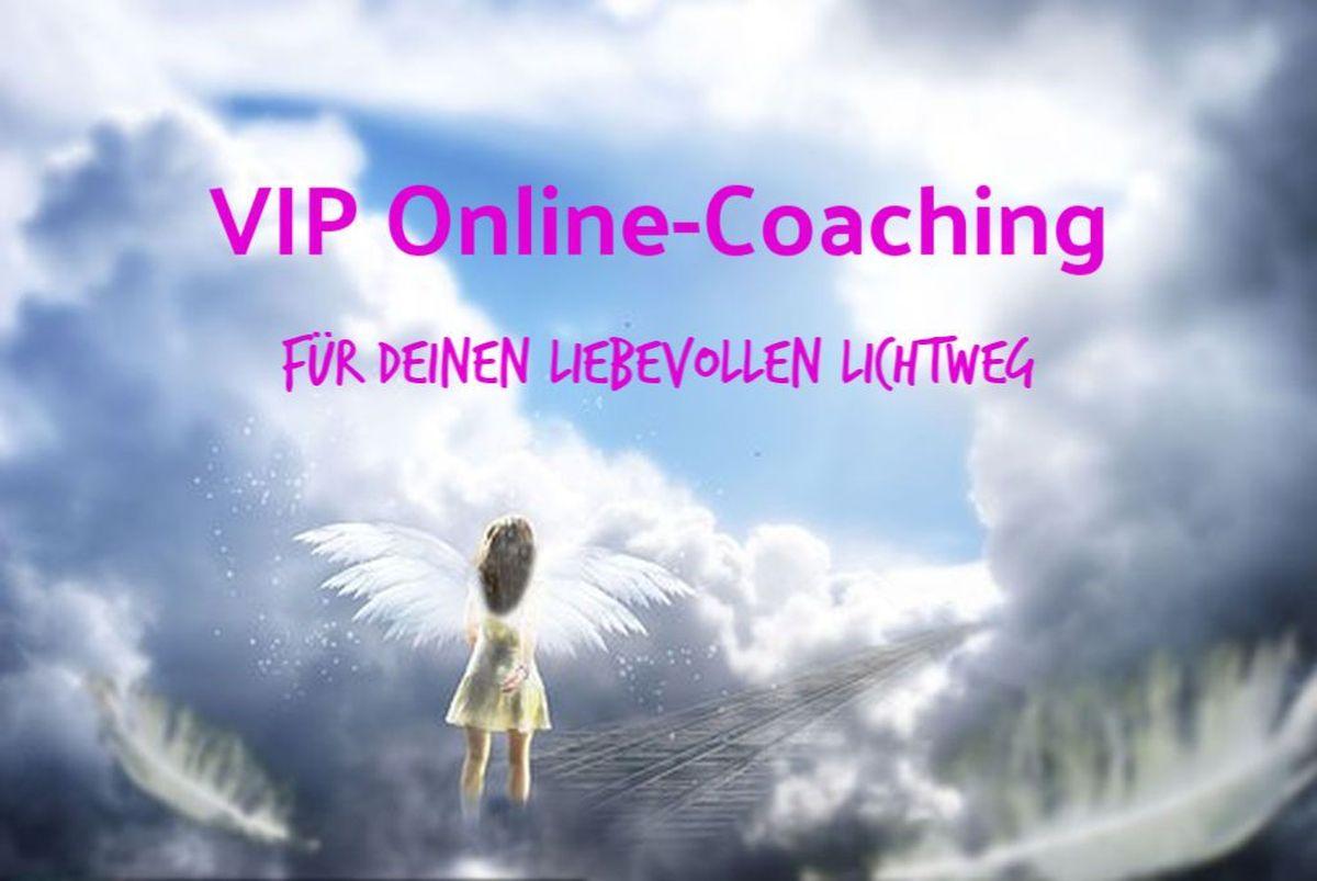 VIP Online-Coaching